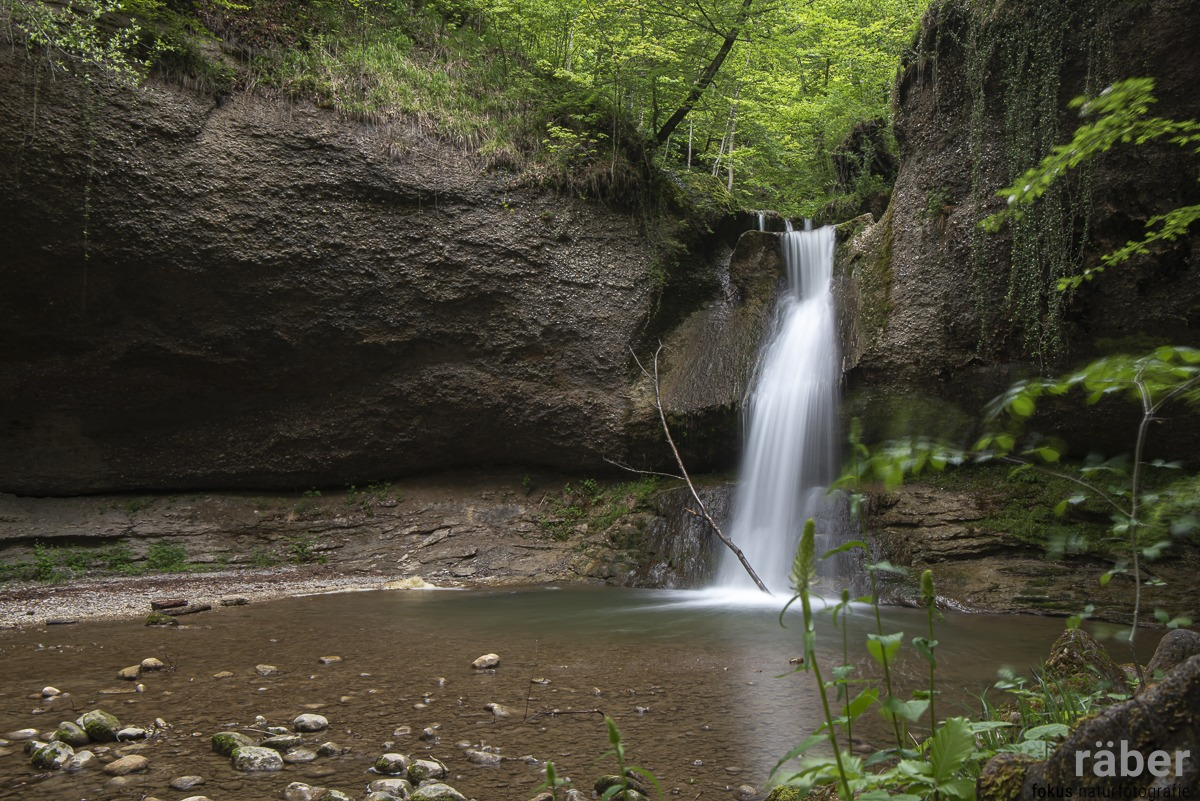 Chämptnertobel Wasserfall bei Wetzikon - 13.05.2020