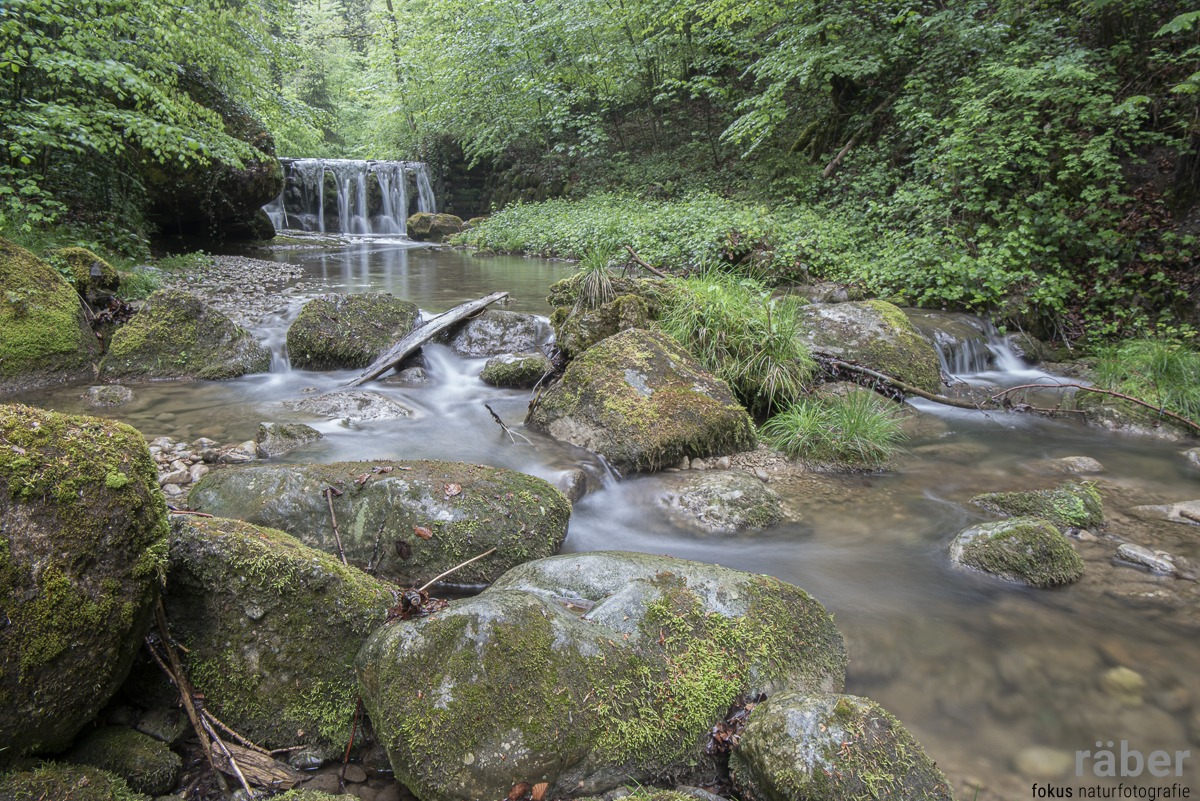 Fluss-, Bach-, Wasserfotografie, Hinwilertobel, 05.05.2020