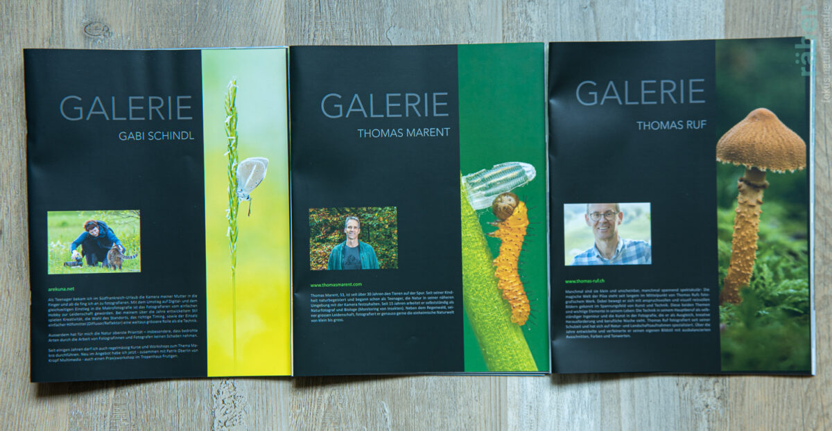 NATURA HELVETICA: Galerie - von andern Naturfotografen lernen